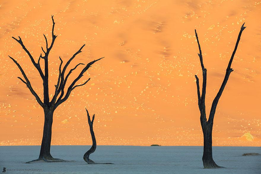 Sand Dunes In Namib Desert, Namibia