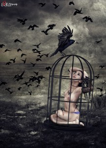 Caged Heart, a love forever more