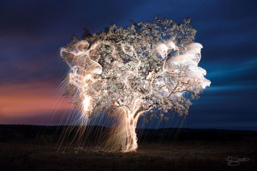 impermanent-sculptures-firework-tree-photography-vitor-schietti-11