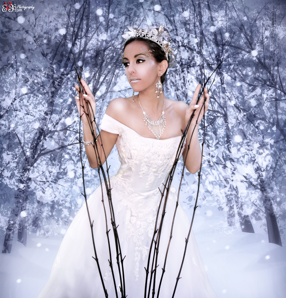 Enchanted Snow Queen