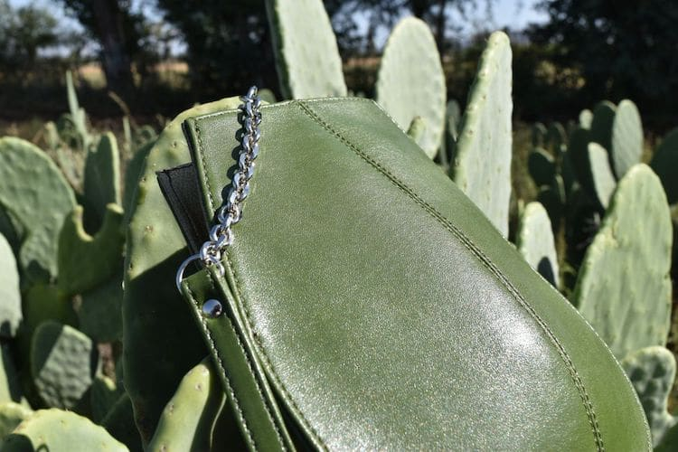 """Two Men Created """"Leather"""" From Cactus to Save Animals and the Environment"""